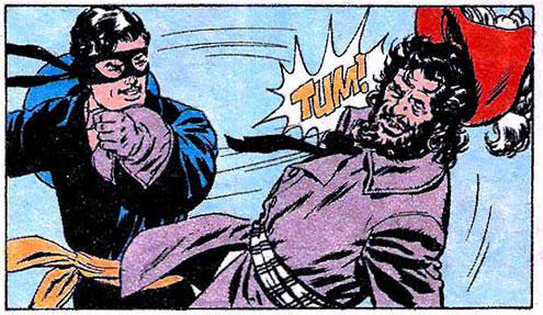 Zorro de Zalla